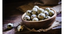Gebeyken Bıldırcın Yumurtası İçmek Faydalı Mıdır?